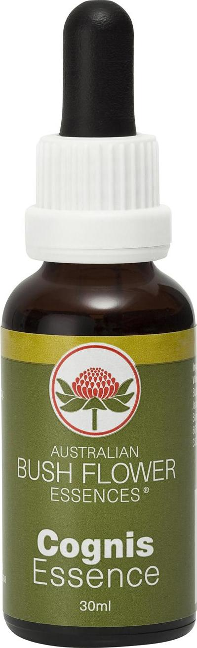 Australian Bush Flower Essences Učení 30 ml